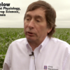 How Growers Can Overcome Low Commodity Prices