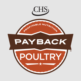 Payback Poultry Feed